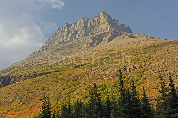 Egyedüli hegycsúcs ősz völgy gleccser park Stock fotó © wildnerdpix
