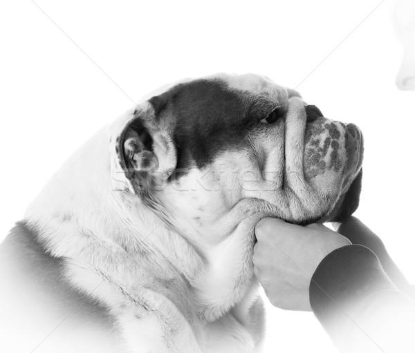 Mejor amigo mujer cara blanco mano Foto stock © willeecole
