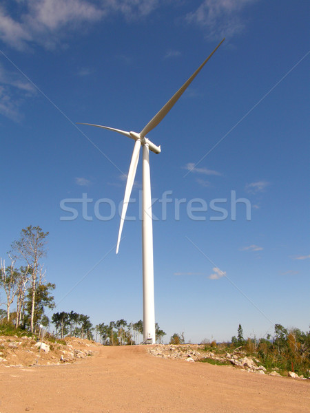wind turbine Stock photo © willeecole