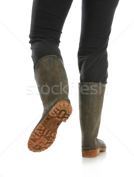 muddy boots Stock photo © willeecole