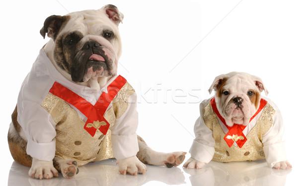 Kettő angol visel összeillő póló nyakkendő Stock fotó © willeecole