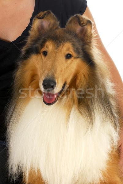 Zdjęcia stock: Kobieta · psa · szorstki · portret · czarny · śmiać