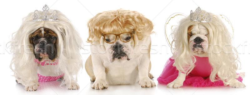 Drie Engels zuur uitdrukkingen vrouwelijke Stockfoto © willeecole
