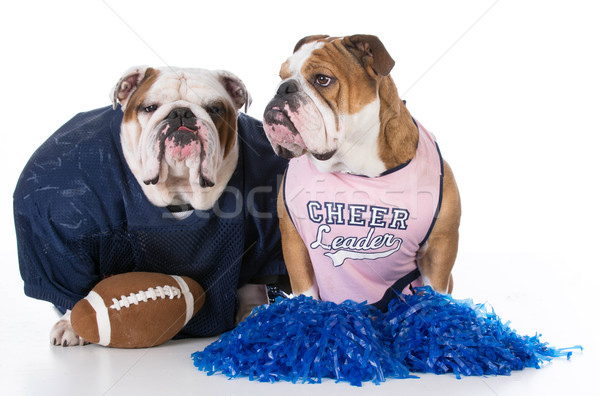 Cheerleader comme football Homme Homme Photo stock © willeecole