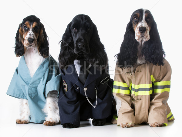 first responders Stock photo © willeecole