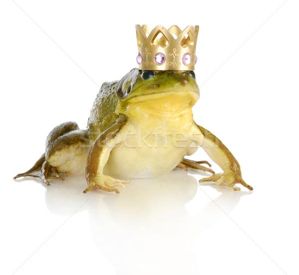 Bonito príncipe coroa isolado branco Foto stock © willeecole