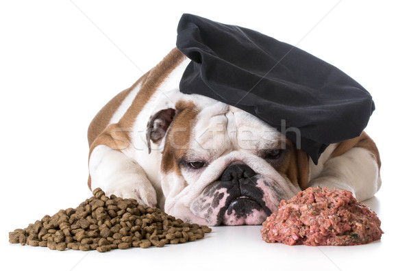 dog food debate - kibble or raw Stock photo © willeecole