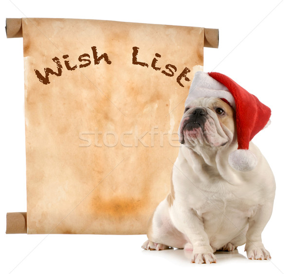 pet wish list Stock photo © willeecole