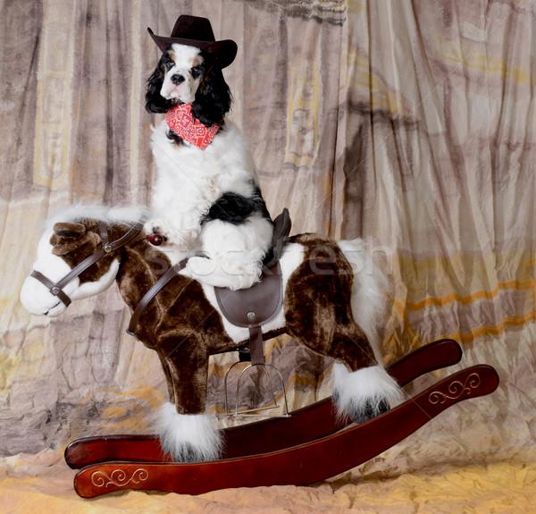 Ouest chien équitation jouet cheval à bascule Photo stock © willeecole