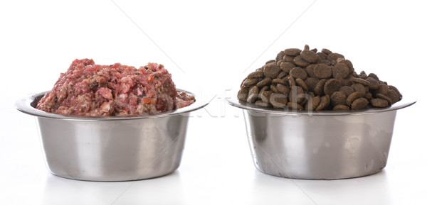 bowl of raw and kibble Stock photo © willeecole