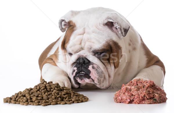 Perro crudo perros cena carne Foto stock © willeecole