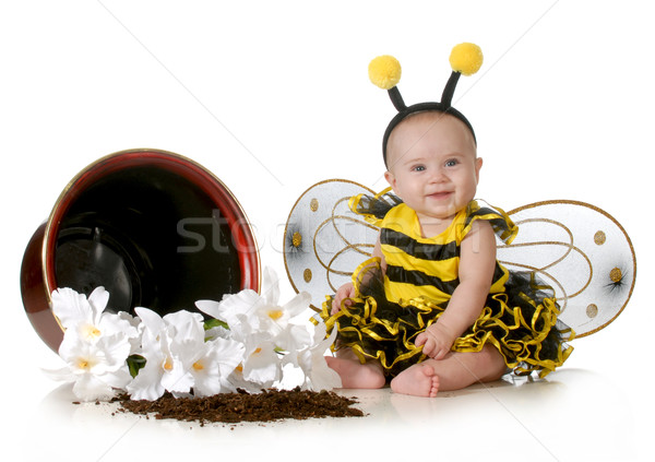 cute baby Stock photo © willeecole