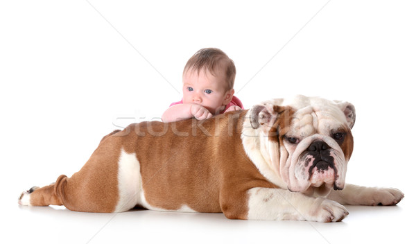 baby and dog Stock photo © willeecole