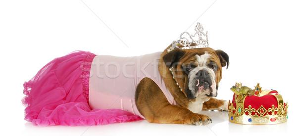 spoiled princess Stock photo © willeecole