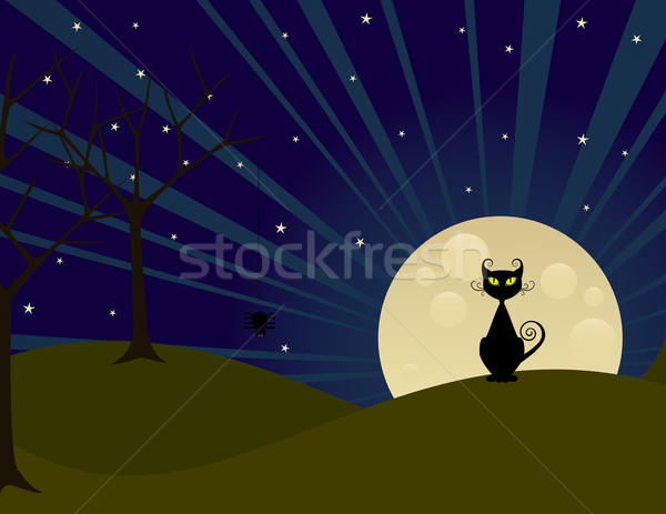 Volle maan nacht halloween kat Stockfoto © wingedcats