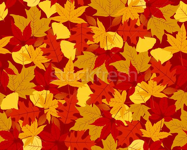 Autumn seamless pattern Stock photo © wingedcats