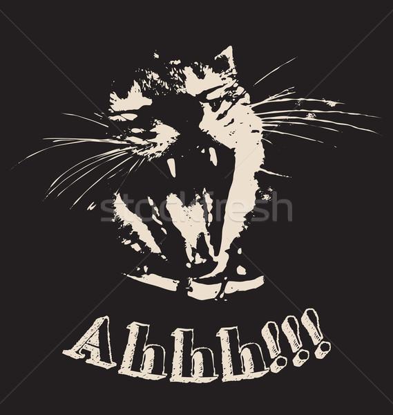 Contrast kat schreeuwen zwarte katten Stockfoto © wingedcats