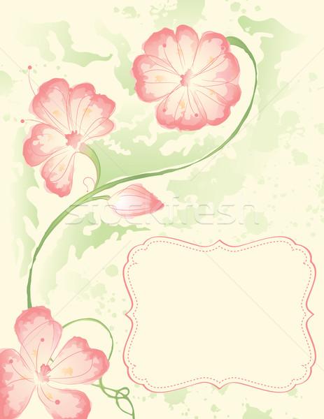 Aquarel bloemen tak frame voorjaar bruiloft Stockfoto © wingedcats