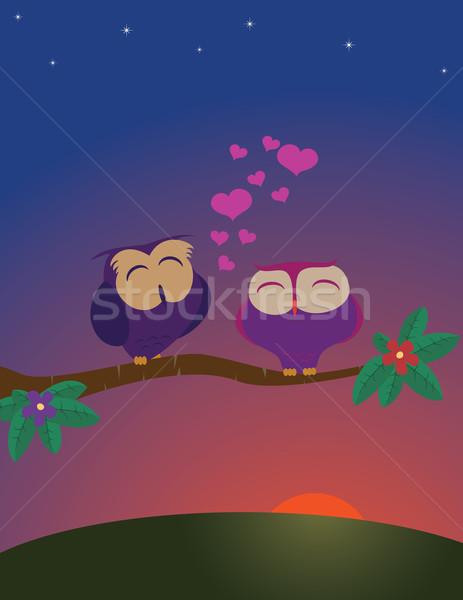 Uilen paar liefde boom voorjaar natuur Stockfoto © wingedcats