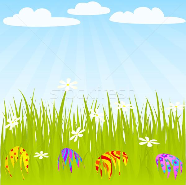 Paaseieren verborgen gras globale kleuren Stockfoto © wingedcats