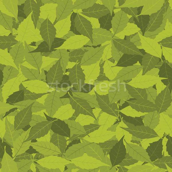 Yaprakları genel yaprak yeşil eps Stok fotoğraf © wingedcats
