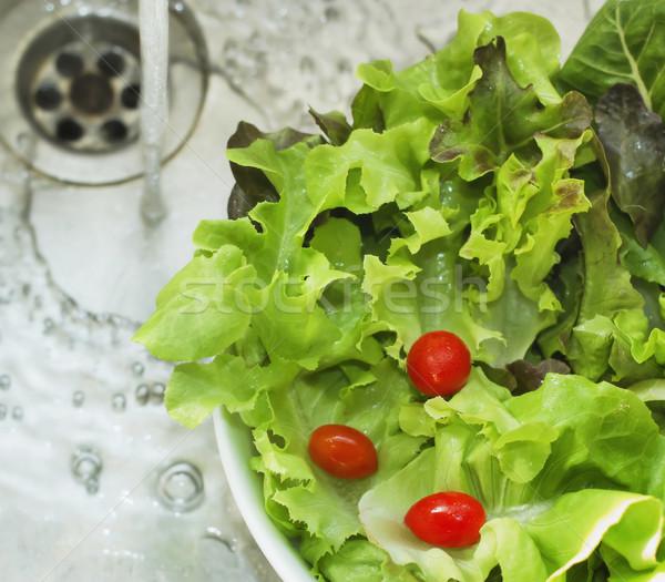Umyć Sałatka sałata wody zielone pomidorów Zdjęcia stock © winnond