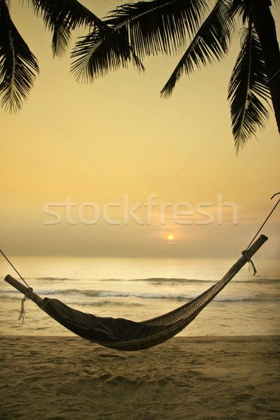 リラックス ビーチ 自然 背景 美 夏 ストックフォト © winnond