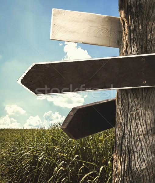 Poste de sinalização seta árvore assinar Foto stock © winnond