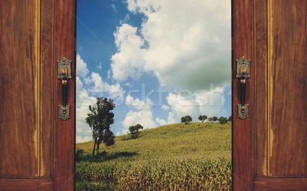 Natureza abrir a porta fora céu porta campo Foto stock © winnond