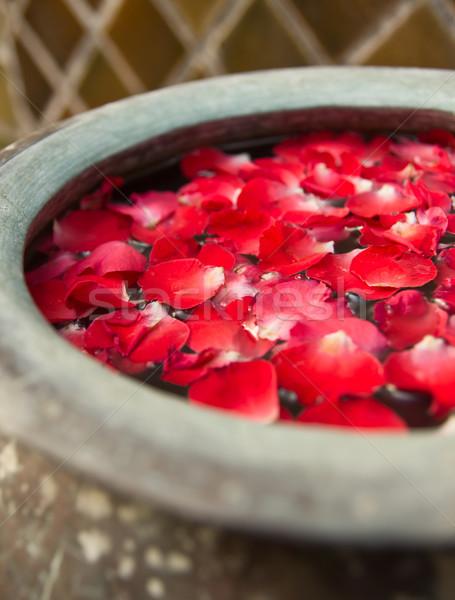 スパ 花 水 マッサージ 赤 美しい ストックフォト © winnond