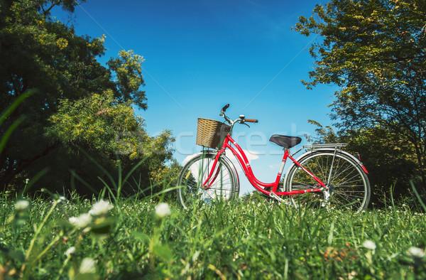 Vermelho bicicleta jardim árvore esportes natureza Foto stock © winnond