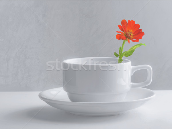 Natureza morta xícara de café flor textura café fundo Foto stock © winnond