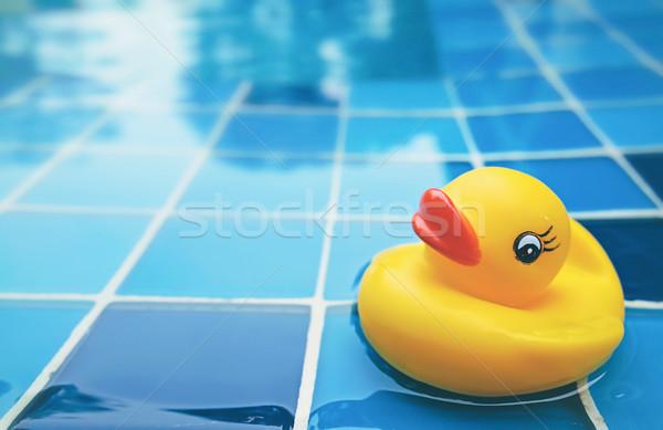 Kaczka basen żółty basen wody niebieski Zdjęcia stock © winnond