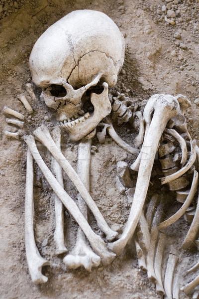 Alszik csontváz eltemetett emberi halál koponya Stock fotó © winterling