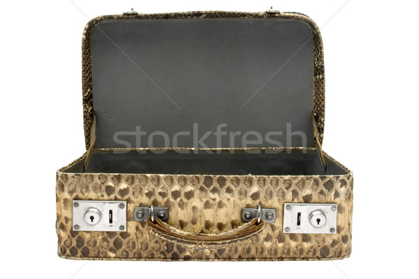 Snakeskin Bag with Clipping Path Stock photo © winterling