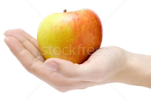 Jabłko kobiet strony kolorowy odizolowany Zdjęcia stock © winterling