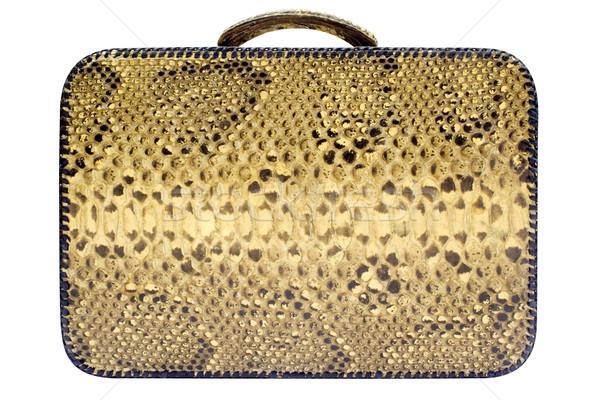 Snakeskin Bag w/ Path (Side View) Stock photo © winterling