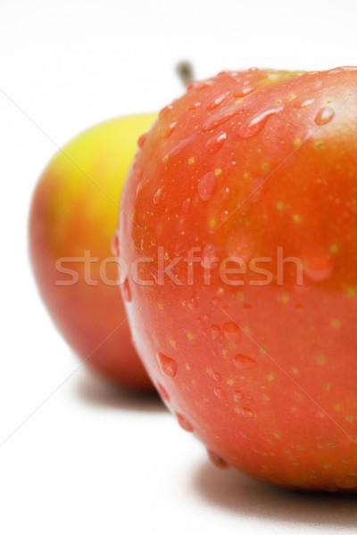 Twee nat appels regendruppels geïsoleerd witte Stockfoto © winterling