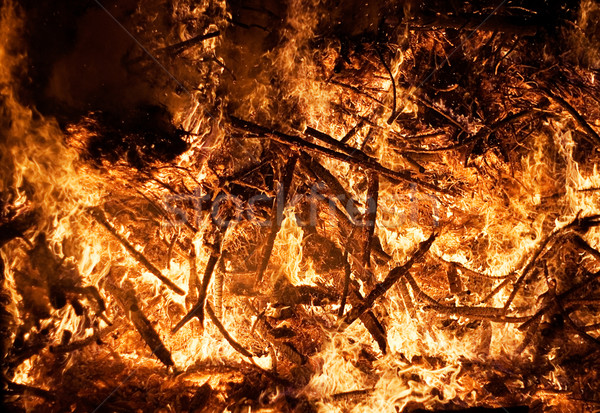 Erdőtűz égbolt tűz fák éjszaka piros Stock fotó © winterling