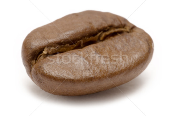 Single Coffee Bean Stock photo © winterling