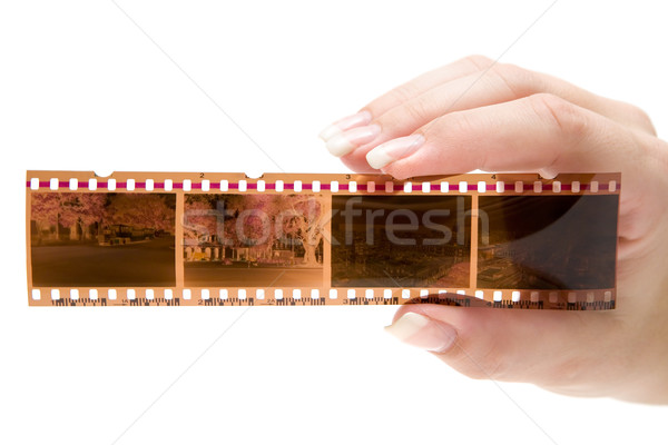 Holding a Filmstrip Stock photo © winterling