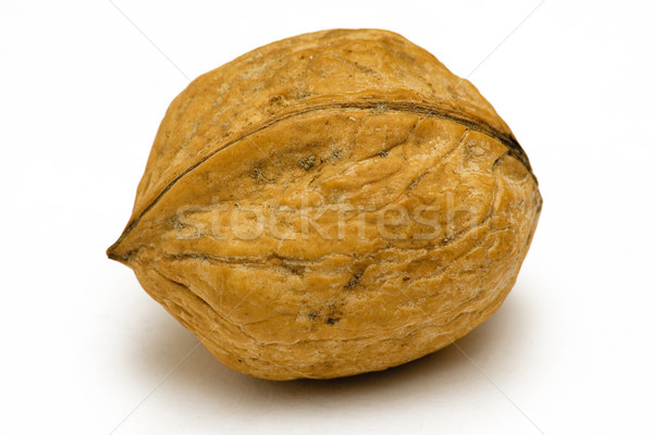 Single Walnut Stock photo © winterling