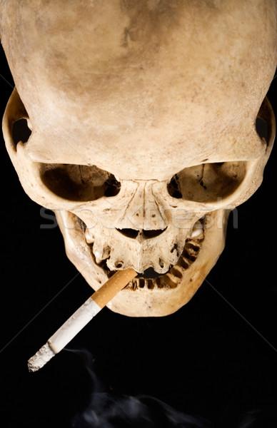 Human Skull and Cigarette Stock photo © winterling
