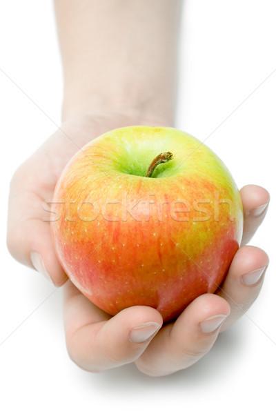 Aanbieden appel vrouwelijke hand kleurrijk geïsoleerd Stockfoto © winterling