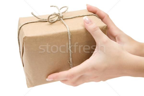 Vrouwelijke handen bruin geïsoleerd Stockfoto © winterling