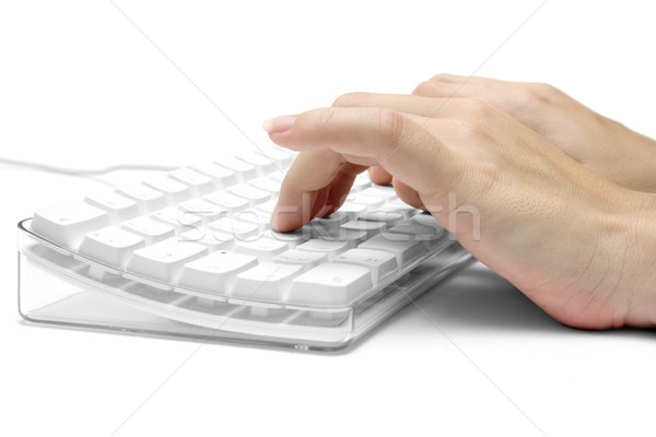 Kezek fehér számítógép billentyűzet női gépel izolált Stock fotó © winterling