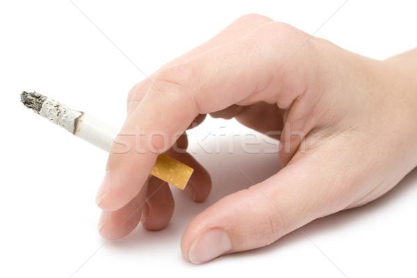 Sigara kadın el yalıtılmış beyaz Stok fotoğraf © winterling