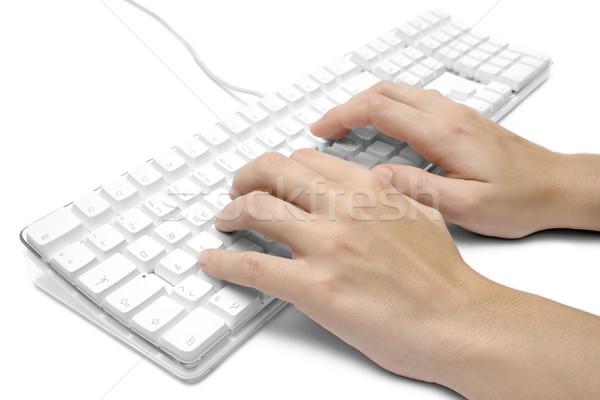 Schrijven witte vrouwelijke handen geïsoleerd Stockfoto © winterling