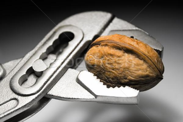 Cracking a Walnut Stock photo © winterling