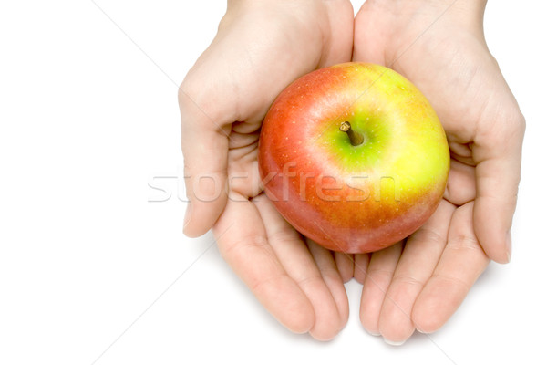 Sheltered Apple Stock photo © winterling